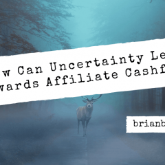 How Can Uncertainty Lead Towards Affiliate Cashflow