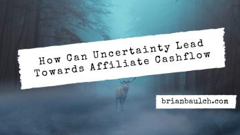How Can Uncertainty Lead Towards Affiliate Cashflow